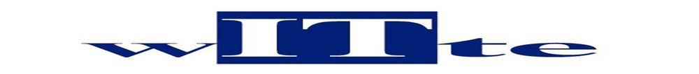 Witte-IT_logo.jpg